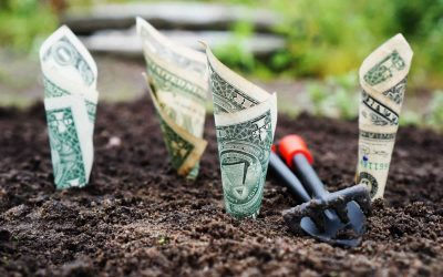 Fintech e la banca digitale per le imprese